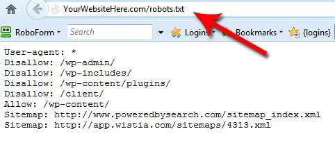 robotstxt example
